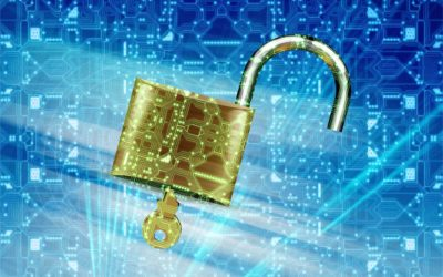 Data Security for Your Business – What You Need to Know About Data Storage and Protection